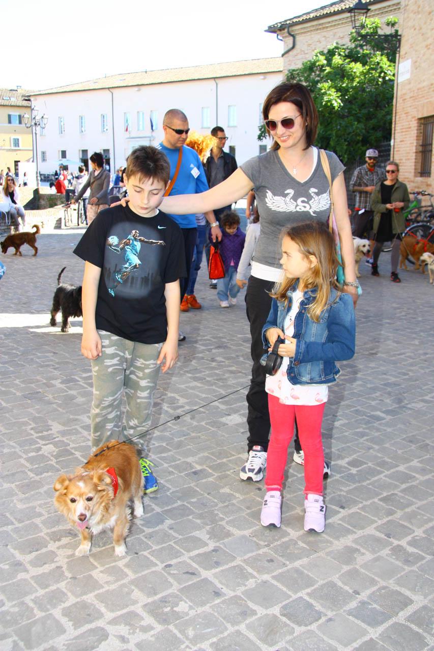 2014_Passeggiandog_319