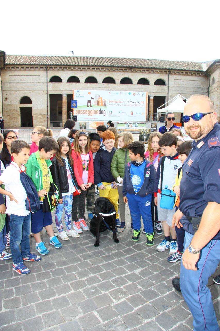 2014_Passeggiandog_scuole_011