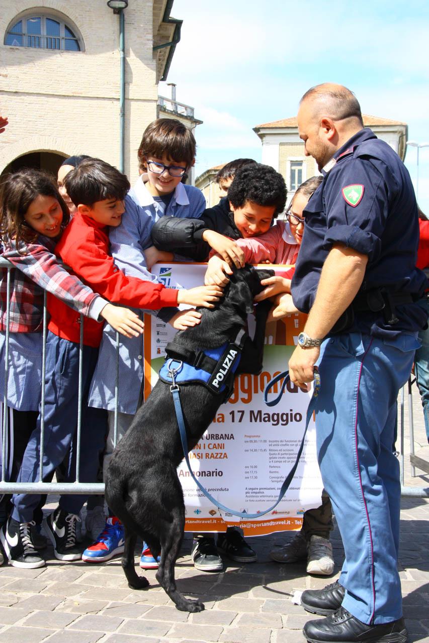 2014_Passeggiandog_scuole_081