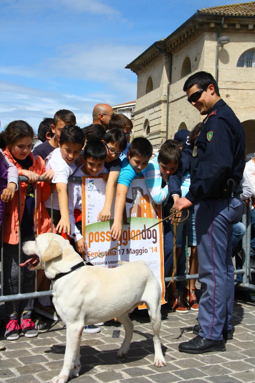 2014_Passeggiandog_scuole_086