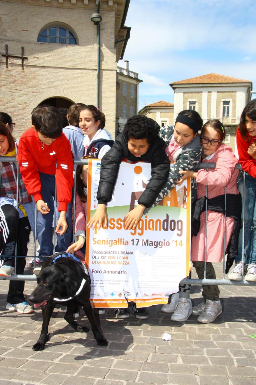 2014_Passeggiandog_scuole_084
